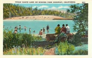 Twain Harte Lake on Sonora Pass Highway, California, CA, Linen