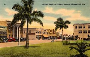 Florida Homestead Krome Avenue Looking North