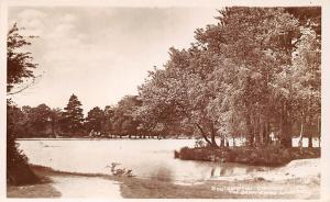 Southampton Common, The Ornamental Lake, Real Photograph