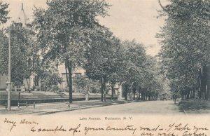 Scene on Lake Avenue - Rochester NY, New York - pm 1905 - UDB