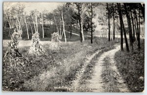 1909  Minnesota Lake Minnetonka Road View Post Card