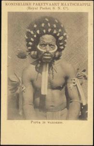 New Guinea, Native PAPUA Male Warrior in War Dress (1910s) KPM K.P.M.