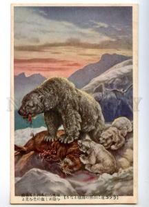 158709 POLAR BEAR Hunt walrus Vintage Japan Colorful PC