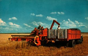Combining In The Wheatfield Of The West