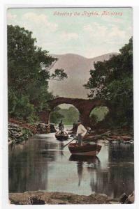 Shooting The Rapids Killarney Ireland 1910c postcard