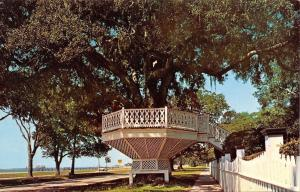 Biloxi Mississippi~Shoo Fly Oak Tree Gazebo~East Beach Boulevard~1950s Postcard