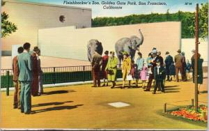 Fleishhacker's Zoo Golden Gate Park San Francisco CA Unused Linen Postcard F7
