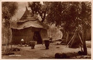 Ghana Gold Coast Cocoa Farm native hut real photo Postcard