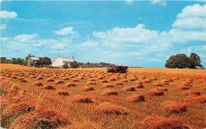 HARVEST TIME FARM TRACTOR POSTCARD CROPS FIELD