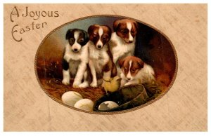 Dog ,  Puppies , Joyous Easter