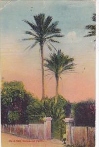 Bermuda Reid Hall Cocoanut Palms 1925