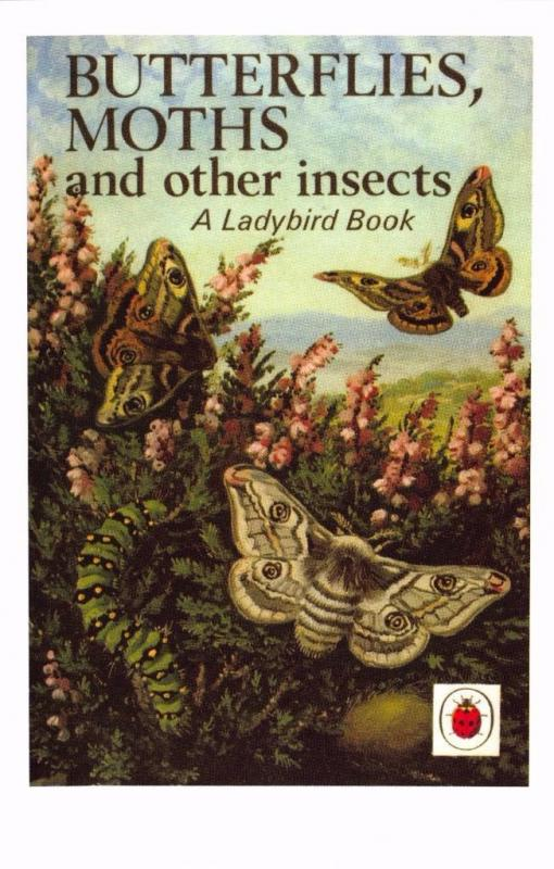Postcard Butterflies, Moths & Other Insects (1965) Ladybird Book Cover