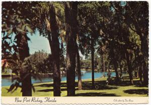 New Port Richey, Florida, 1980 used Postcard