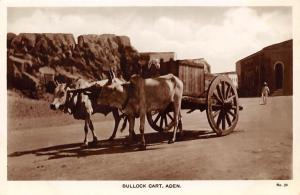Yemen Aden Bullock Cart, real photo (M.S. Lehem Egyptian Cigarettes Factory)