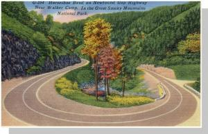 Smoky Mountains Nat'l Park,NC/TN Postcard,Horseshoe,Nr Mnt!