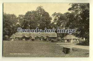 tp0417 - Hants - Early View of the Cottages at Swan Green, New Forest- postcard