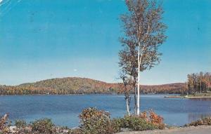 Les Laurentides Ste-Marguerite du Lac Masson,  Quebec,  Canada,  PU_1986