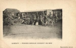 CPA Djibouti Afrique - Femmes Somalis Vendant du Bois (87014)