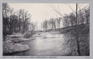 Natural Scenery, Beauty Spot in Memorial Park, Newcastle, Indiana, 40-60´s
