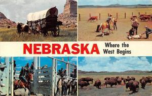 Nebraska multiview, Mitchell Pass, Oregon Trail, cattle ranch, buffalo herd