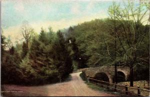 Wissahickon Drive and Rex Avenue Bridge Philadelphia PA Vintage Postcard I20