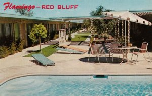 RED BLUFF , California, 1940-60s; Poolside at Flamingo Motor Hotel