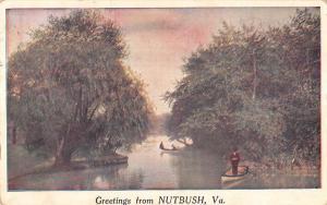 Nutbush Virginia Row Boat Waterfront Greeting Antique Postcard K83598