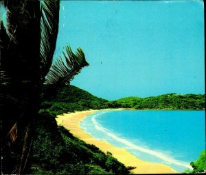 CI01342 antigua deep bay caraibe caribbean sea palmtrees flora flowers stamps