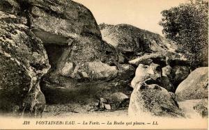 France - Fontainebleau. La Roche qui pleure