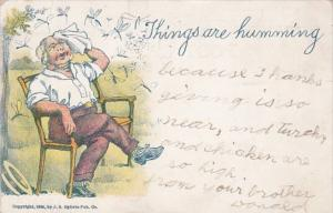 Humour Man With Mosquitos Things Are Humming 1905
