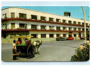 7231  Mexico  La Arana en Mazaltan    Hotel la Siesta