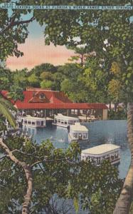 Florida Silver Springs Electric Glass Bottom Boats Leaving Docks 1946 Curteich