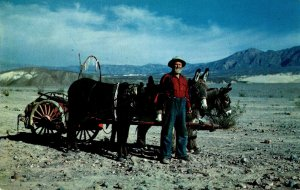 California Death Valley Prospector & Burro Wanderers Of The Waste Lands