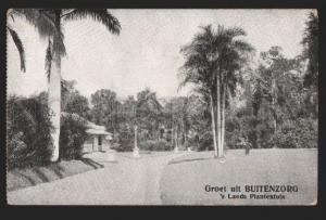 116915 Indonesia JAVA Groet uit BUITENZORG Lands Plantentuin