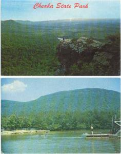 2 Cards of Cheaha State Park, Alabama, AL  Chromes
