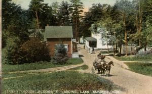 NH - Lake Sunapee. Forest House at Blodgett Landing