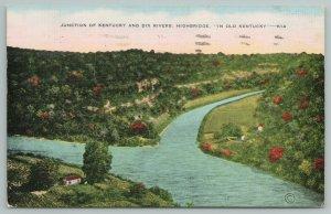 Kentucky~Junction Of Dix Rivers~Highbridge~River~Vintage Postcard