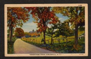 NY Greetings from COBLESKILL NEW YORK Postcard PC Cows