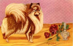 Dog - The Pomeranian. Artist: Lewis Larsen