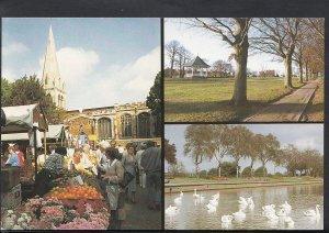 Northamptonshire Postcard - Views of Wellingborough   C1239