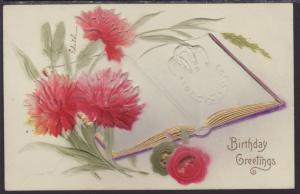 Birthday Greetings,Carnations
