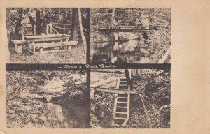 BEULA , Michigan ,  1908 ; Views at T. Pautz Resort