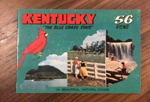 Vintage - Kentucky The Blue Grass State Souvenir Booklet - Views