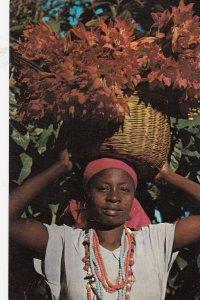 Young Haitian Flower Vendor, Petion-Ville , Haiti , W.I. , 50-60s