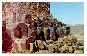 WA - Tumwater. Ginkgo Petrified Forest Museum Exhibit