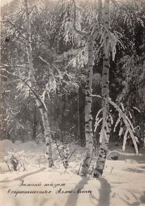 B56588 Winter landscape Arbress tree alma ata kazakhstan