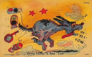 C-632 Ray Walters Comic Bring Home A Sad Tale Dog Curt Teich Postcard