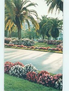 1980's BELLEVIEW BILTMORE HOTEL Clearwater Florida FL B2683