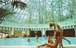 Holiday Inn Don Mills Toronto Ontario ON Pool Bikini Advert Unused Postcard D48