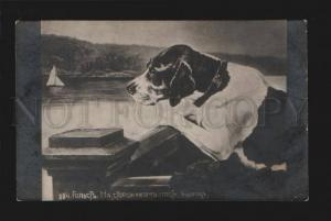 076334 Lovely Dog POINTER Diver by HOLST vintage PC